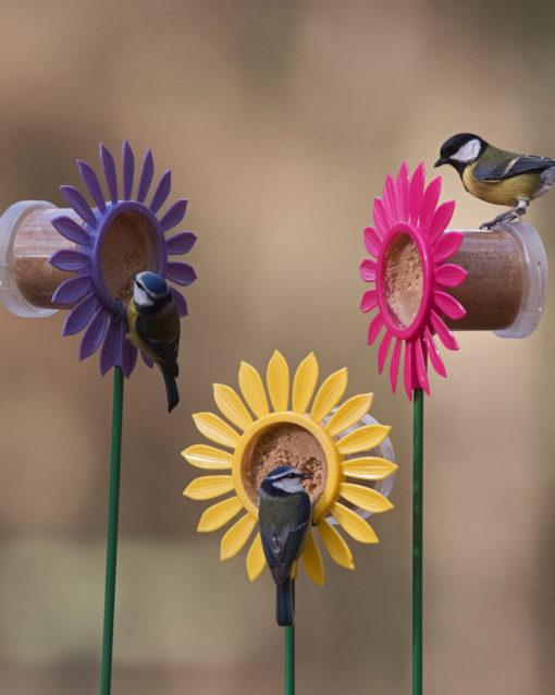 A quoi sert une mangeoire à oiseau?
