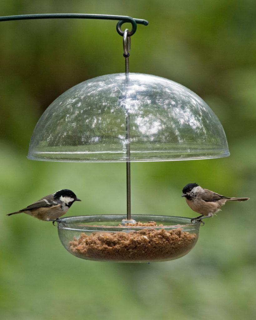 comment installer mangeoire oiseaux